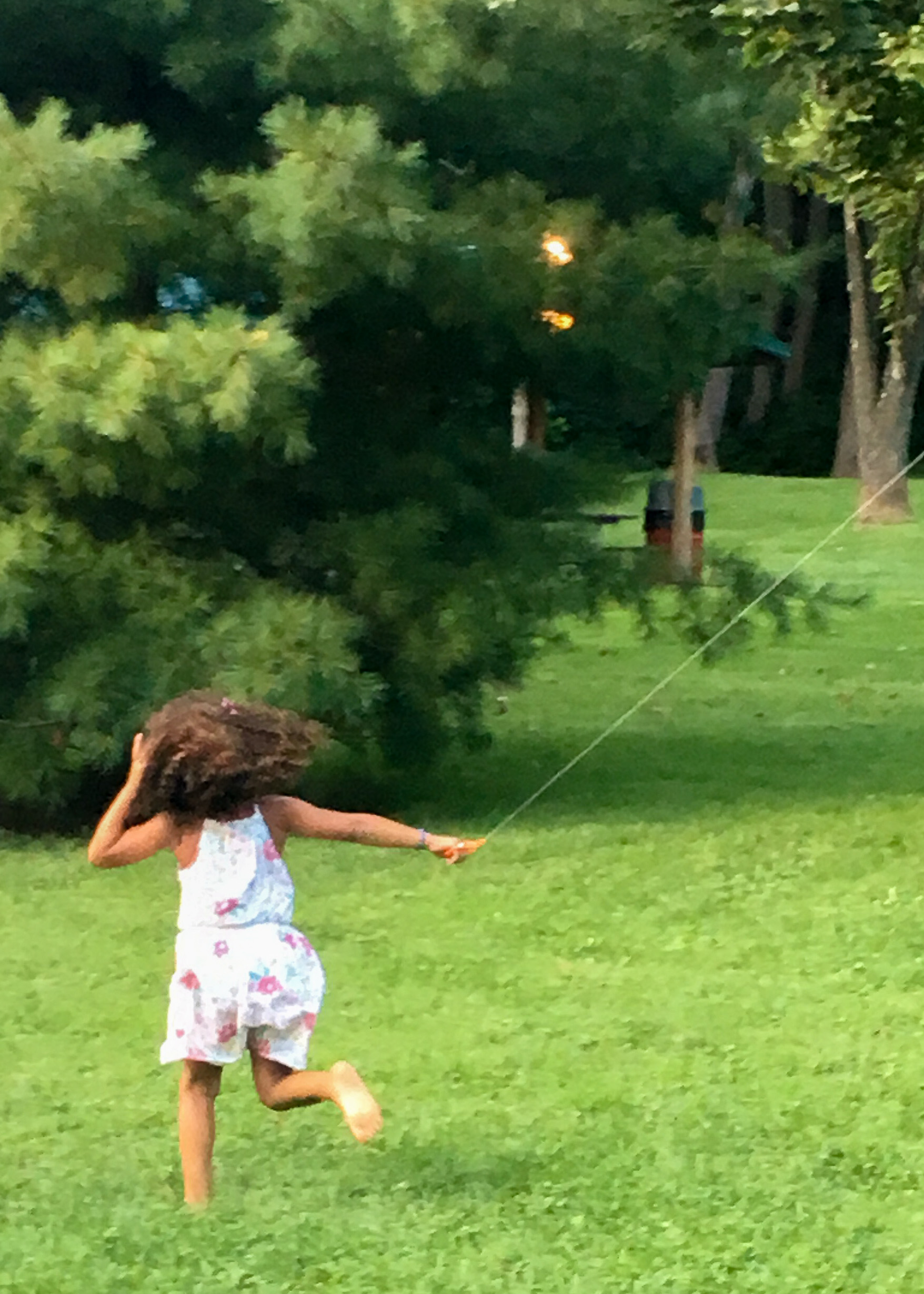 Child playing with kite at the company picnic